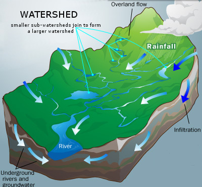 What Is A Watershed Wheatley River Improvement Group