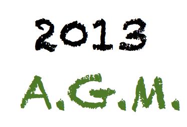 2013 AGM