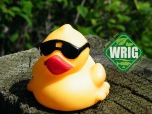 WRIG racing duck